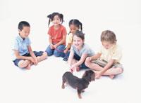 犬と遊ぶ5人の子供たち
