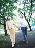 手を繋ぎ並木を歩く老夫婦 02299002188  写真素材・ストックフォト・画像・イラスト素材 アマナイメージズ