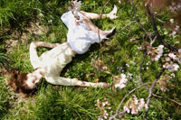 桜の木と芝生の上に寝そべる女性