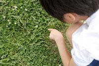 草地にかがむ男の子