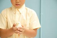 ヒヨコを持つ男の子