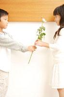 バラの花を贈る男の子