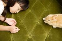 ソファで眠る女の子とウサギ