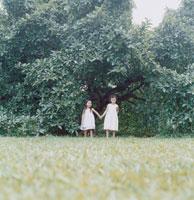 大きな木の下にいる2人の女の子