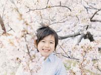 桜の木と男の子 02299005346A| 写真素材・ストックフォト・画像・イラスト素材|アマナイメージズ