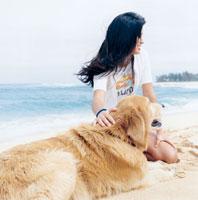 浜辺に座る20代女性と犬