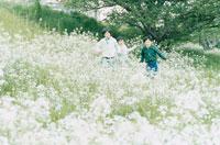 花畑の中を走る3人の少年