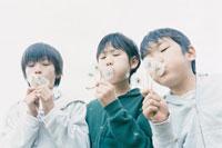 タンポポの綿毛を吹く3人の少年