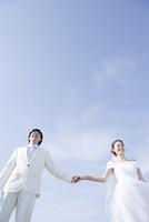 青空の下で手をつないで並ぶ新郎新婦 02299008141| 写真素材・ストックフォト・画像・イラスト素材|アマナイメージズ