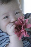 赤ちゃんと花