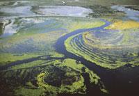 Okavango Delta flooding (aerial)