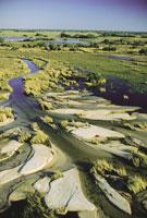 Okavango Delta during low water