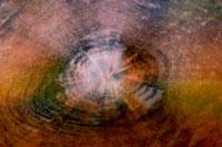珪化木 02314002671| 写真素材・ストックフォト・画像・イラスト素材|アマナイメージズ