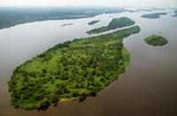 熱帯雨林を抜ける曲がりくねった川