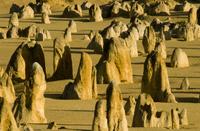 Limestone pinnacles, Nambung National Park, Western Australi