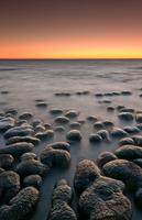Stromatolites in twilight, Shark Bay, Western Australia