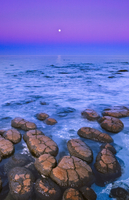 Stromatolites and moon, Shark Bay, Western Australia