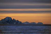 Coastline at sunset, East Greenland