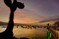 Tourist vessels at anchor, San Cristobal Island, Galapagos I