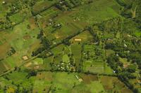 Agricultural fields (aerial), near Nairobi, Kenya