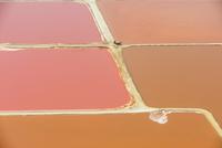 Salt ponds, (aerial), Walvis Bay, Namibia