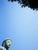 鎌倉大仏と青空と樹木