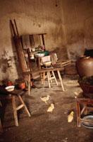 家の中に居るアヒルの子 02318000009| 写真素材・ストックフォト・画像・イラスト素材|アマナイメージズ