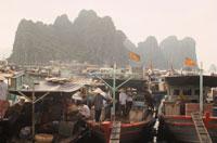 ハロン湾の船着場 ベトナム