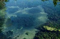 水 02319000006| 写真素材・ストックフォト・画像・イラスト素材|アマナイメージズ