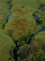 苔と小川 02319000034| 写真素材・ストックフォト・画像・イラスト素材|アマナイメージズ