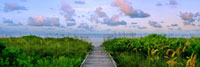 Boardwalk leading to a beach,Florida,USA