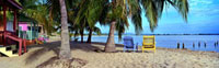 Two beach chairs under a palm tree on the beach,Belize