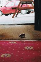 床に置いてあるブタのおもちゃ 02327000065| 写真素材・ストックフォト・画像・イラスト素材|アマナイメージズ