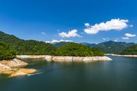 渇水の奥利根湖