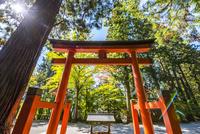 飛騨山王日枝神社の鳥居