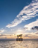 朝の白髭神社の鳥居
