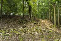 郡山城の二の丸跡