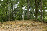 郡山城の本丸跡