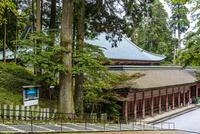 比叡山の根本中堂