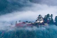 朝靄の郡上八幡城
