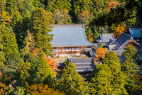 寂光苑から秋の永平寺