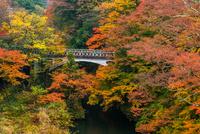 秋の黒谷橋