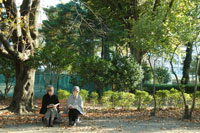 公園のベンチで読書をするシニア女性2人