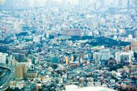 サンシャインタワーから見た風景