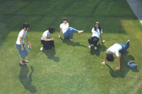 芝生の上で白いTシャツを着た女の子5人