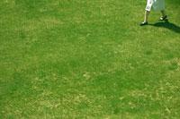 芝生の上を歩く白いワンピースを着た女の子