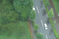 道を走る車と緑
