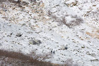 しらび平の山 02332000234| 写真素材・ストックフォト・画像・イラスト素材|アマナイメージズ