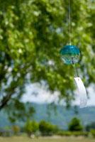 木に吊るした青い風鈴
