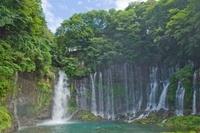 白糸の滝 02332000361| 写真素材・ストックフォト・画像・イラスト素材|アマナイメージズ